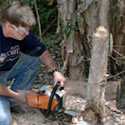 A chainsaw has the lowest environmental impact.